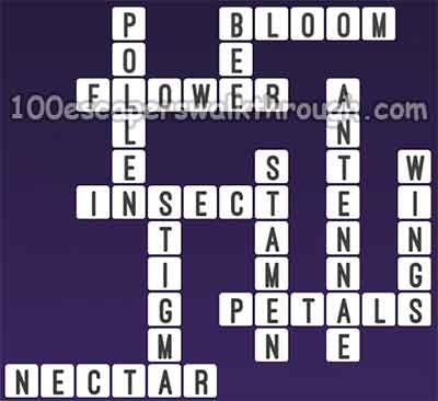 one-clue-crossword-bee-answers