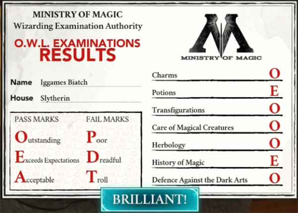 hogwarts-mystery-owl-exam