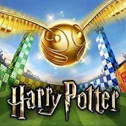 hogwarts-mystery-quidditch-quest