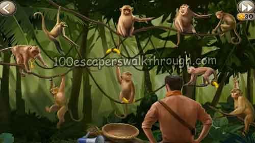hidden-ruins-monkey-puzzle